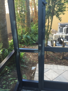 before paint removal naples, marco island, bonita springs, cape coral, ft myers