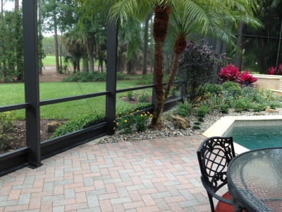 critter protection naples, cape coral, ft myers,