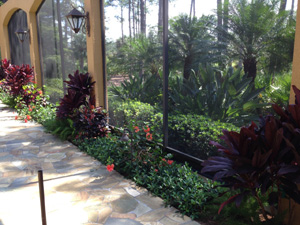 Aluminum Screen Enclosures Naples Ft Myers Cape Coral